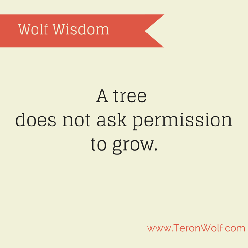 a-tree-does-not-ask-permission-to-grow