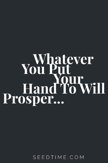 Whatever-You-Put-Your-Hand-to-Will-Prosper...