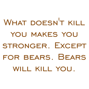 what-doesnt-kill-you-makes-you-stronger-except-for-bears-bears-will-kill-you-shirt-small