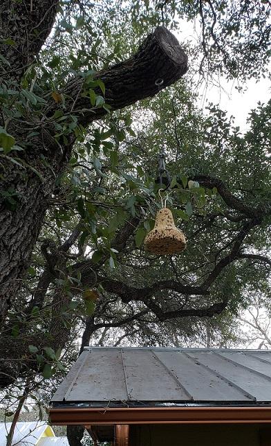 birdseedbell
